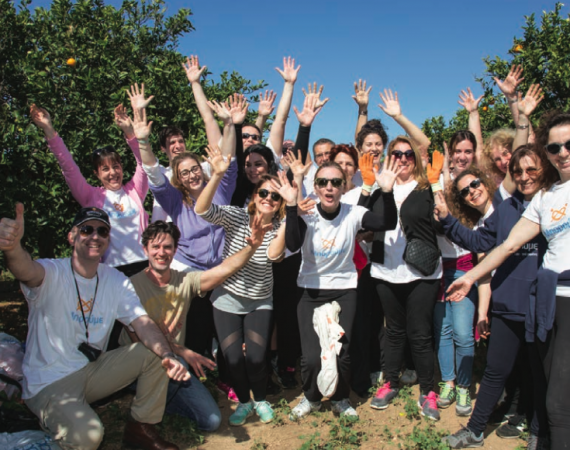 Volunteer on your holiday to Greece & make a difference 2