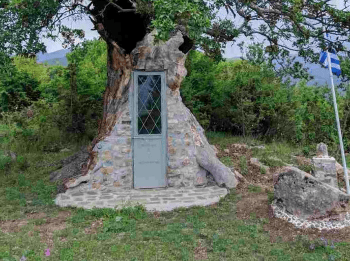 300 year old tree turned into small church honouring monk from Mount Athos 5