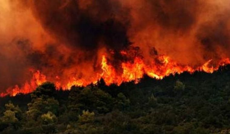 Villagers evacuated as fire spreads in Achaia 8