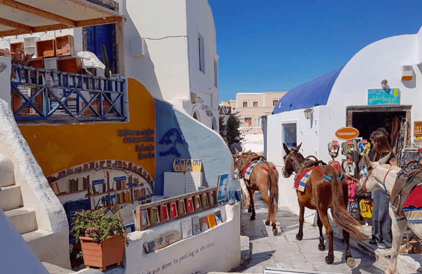 World's best bookshop is located in Santorini 8