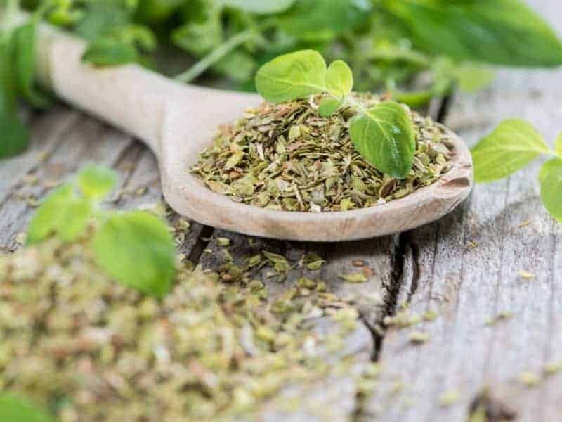 Greek Oregano one of the healthiest & tastiest herbs in the world 20