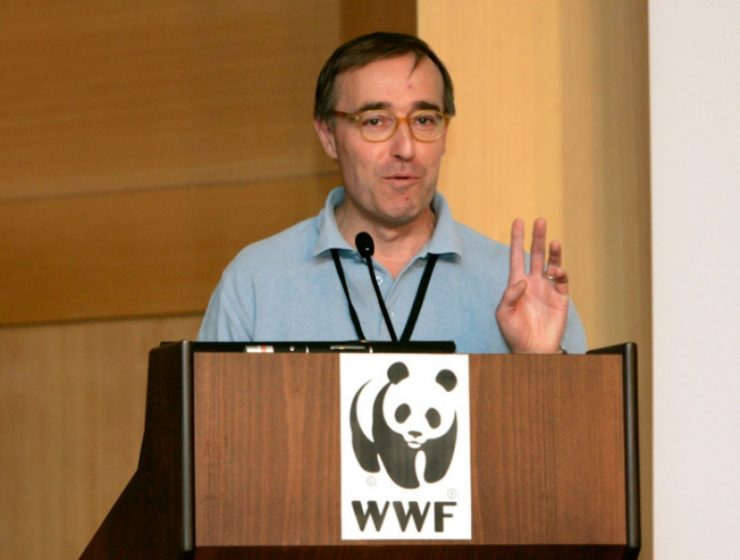The Med is at risk: WWF director 13