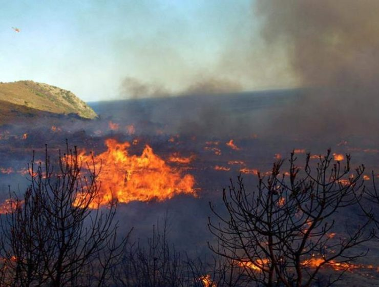 Wildfire breaks in the village of Kalamaki in Zakynthos 8