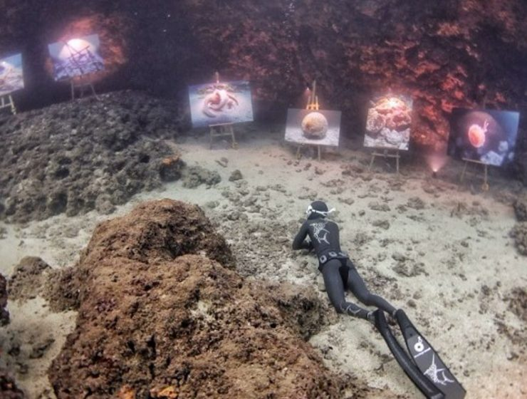 World's first undersea photo exhibition takes place on Amorgos island 20