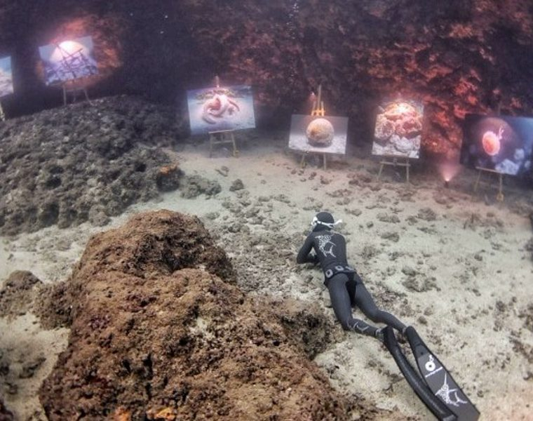 World's first undersea photo exhibition takes place on Amorgos island 42