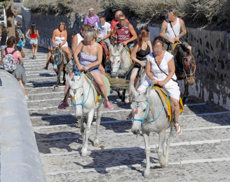 Obese tourists banned from donkey rides in Greece 18
