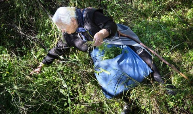 80-year-old lady arrested and fined in Katerini for selling homegrown Xorta 3