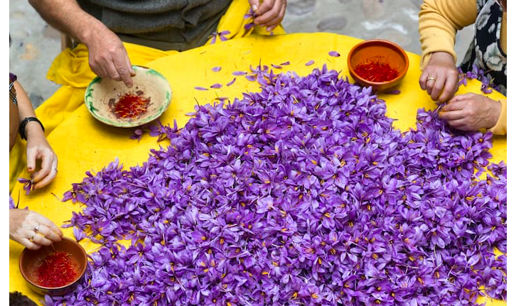 Saffron, Greece's 'Red gold' to be exported to China by end of May 14
