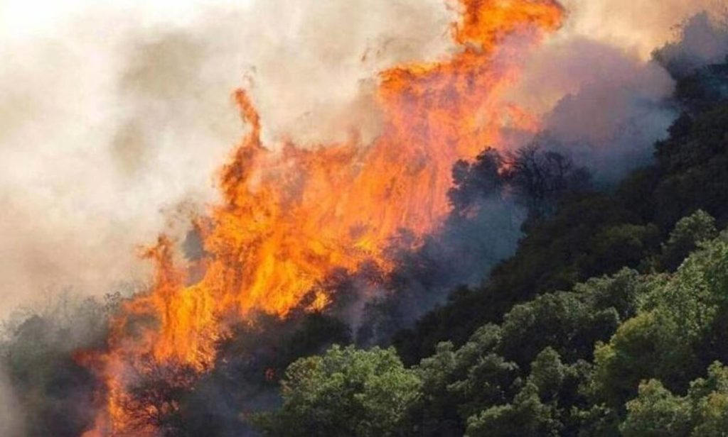 Large fires break out in Corinth and Evia 3