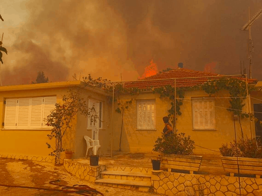 Wildfire rages through village on Zakynthos island (PICS & VIDEO) 10