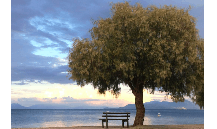 Xylokastro, an ideal destination all-year-round 30