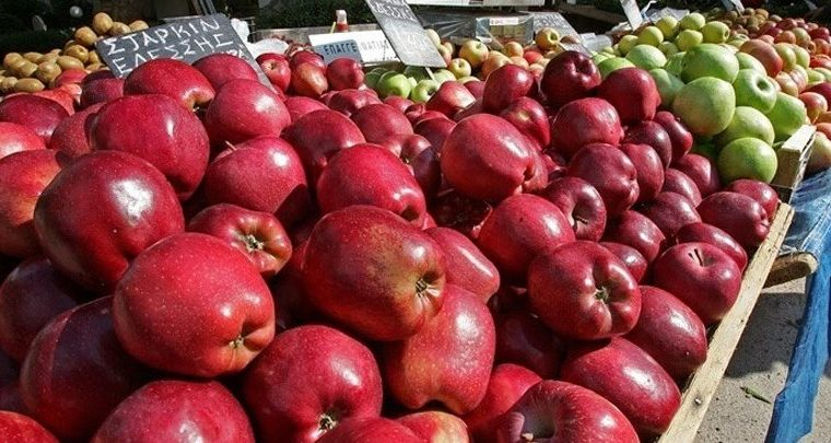 Indian market gives Greek apples the green light   3