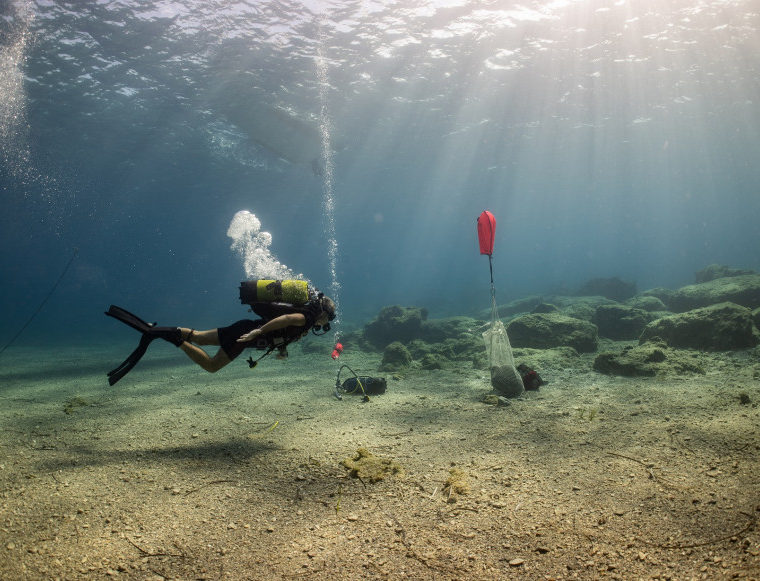 Five ancient shipwrecks discovered off the island of Kasos 5