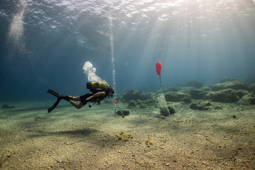 Five ancient shipwrecks discovered off the island of Kasos 1