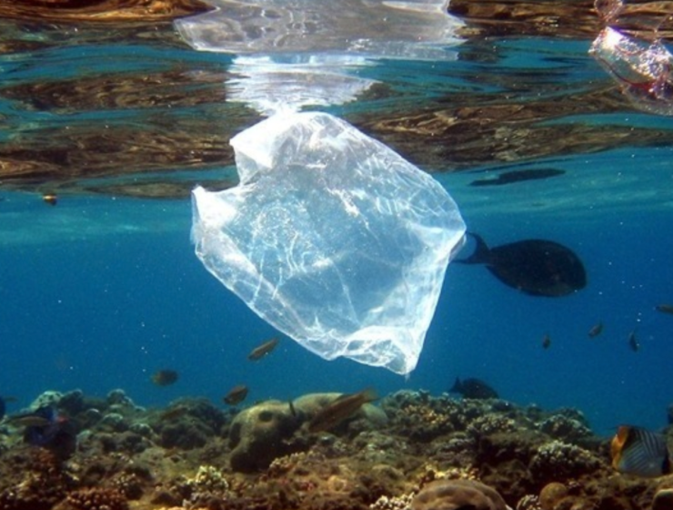 Plastic dumped in Mediterranean Sea could double in 20 years
