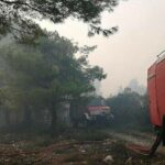 Firefighters battle flames on the island of Zakynthos