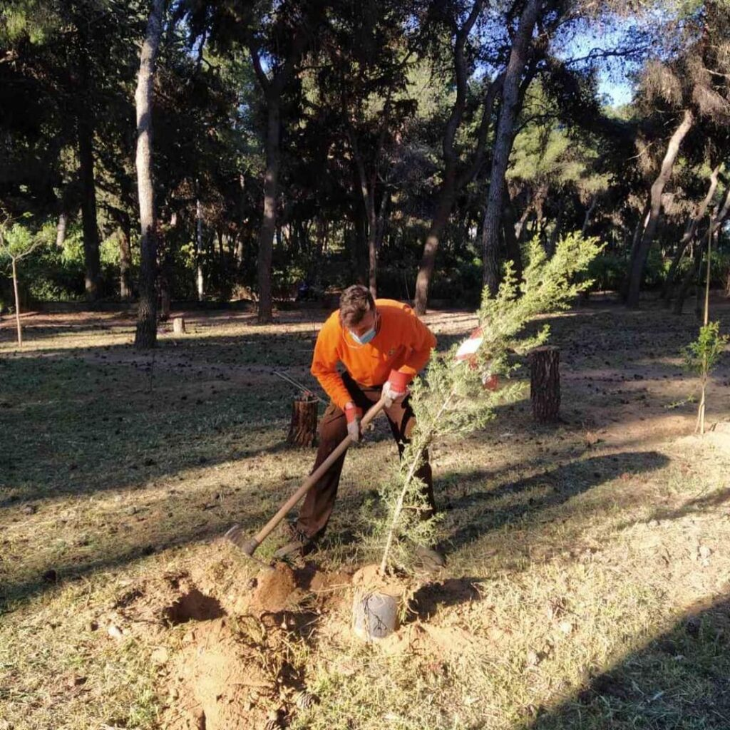 400 trees planted in Athens for Earth Day 2021