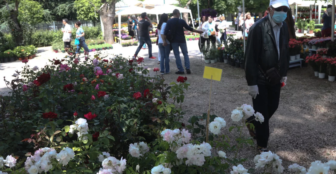 67th annual Kifissia Flower Show opens