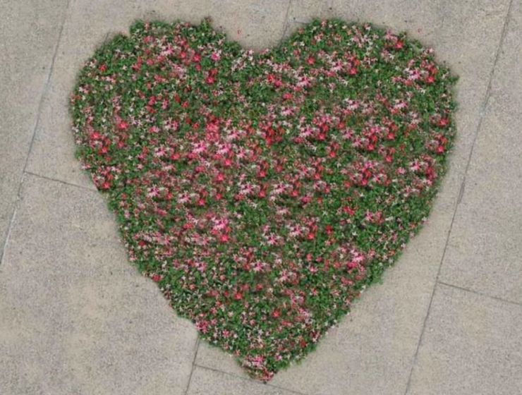Heart of flowers in Thessaloniki for Mother's Day