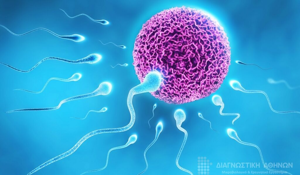 Male fertility and vaccination impact addressed in new study 13