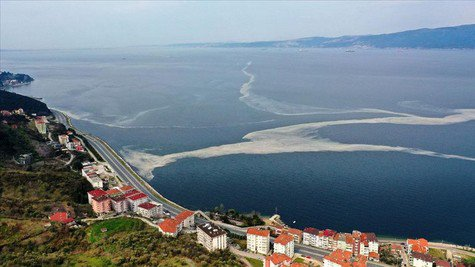 Marmara's sea snot problem continues as engineers call for advanced treatment of wastewater 1