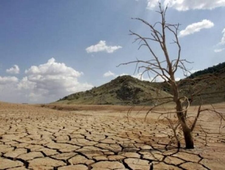 Drought could be the next pandemic warns the UN 8