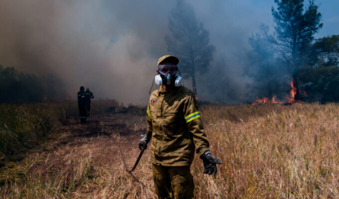 Beekeeper to go on trial for causing Stamata fire 4
