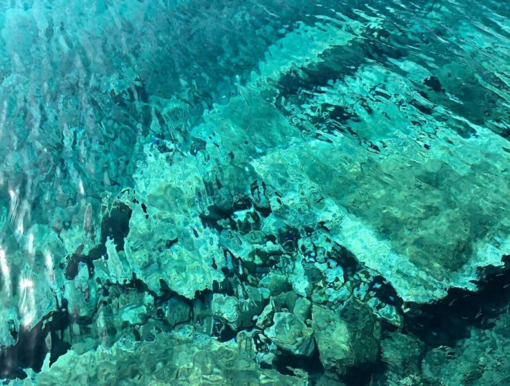 Ancient coral formations being explored 1