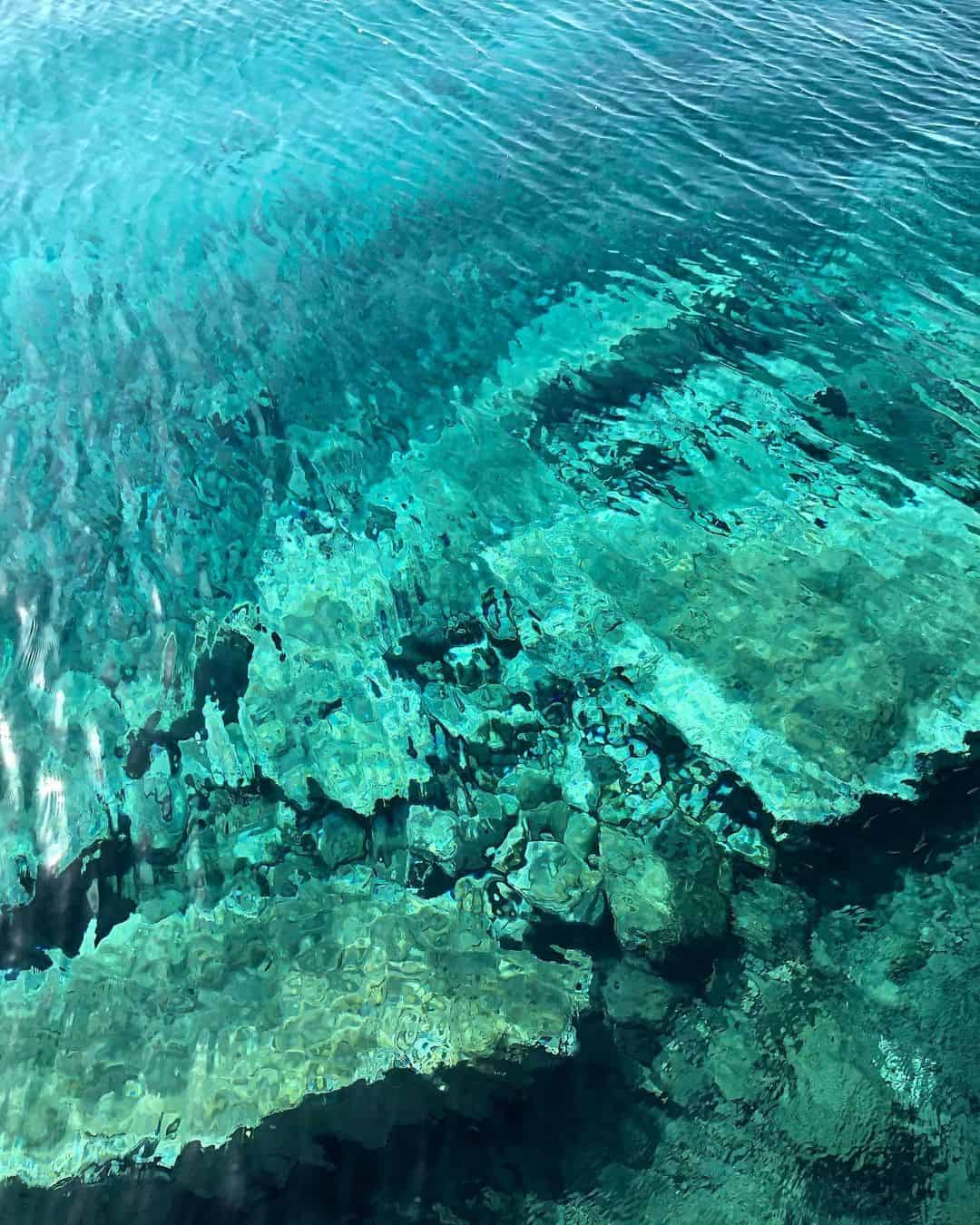Ancient coral formations being explored 13