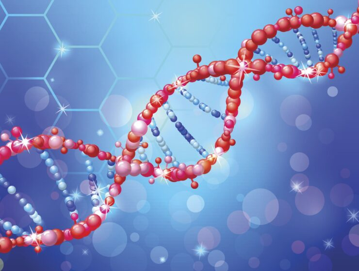 New Study: Scientists have identified genetic cause of endometriosis, leading to potential treatment breakthroughs 22